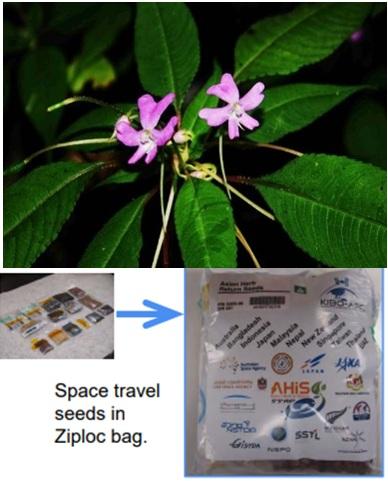 Một số hoạt động hợp tác quốc tế của Viện Công nghệ vũ trụ với JAXA, Nhật Bản